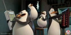 Penguins of Madagascar Operation Ducky SD (movie)