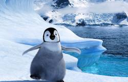 Happy Feet HD (movie)