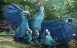 Rio 2 HD (movie)
