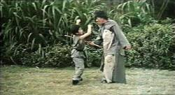 Kung-fu Kid SD (movie)
