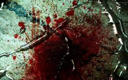 Blood Shed HD (movie)