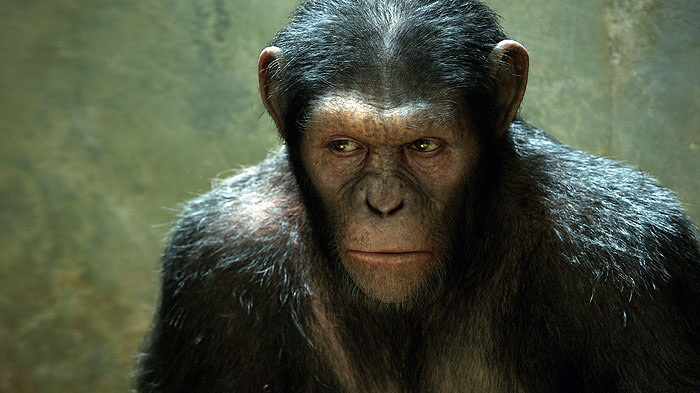 Zrození Planety opic HD (movie) / Rise of the Planet of the Apes (2011)